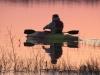 spring paddle